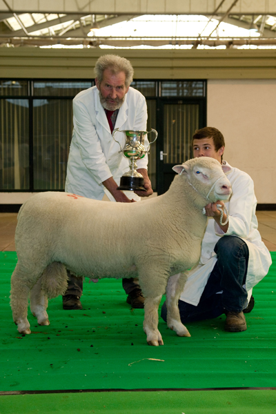 Blackhill Success at May Fair 2011