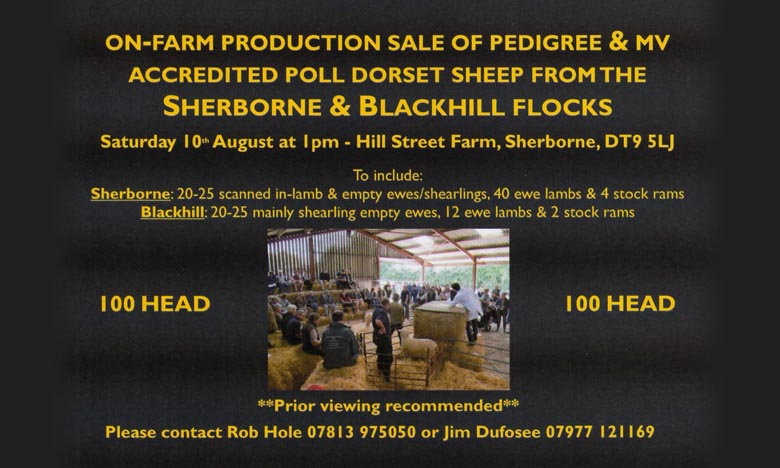 Blackhill Production Sale